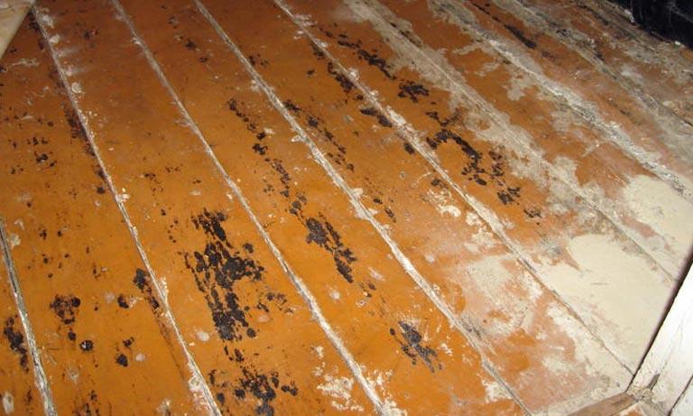 Часто старые деревянные полы нужно менять из-за гниения
